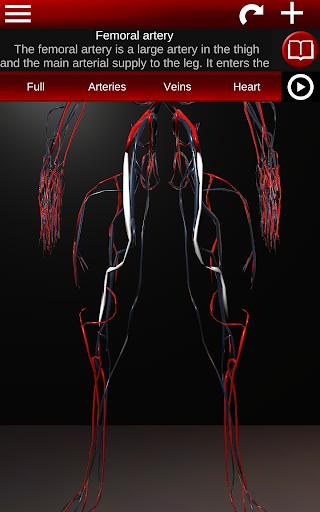 Circulatory System in 3D Anatomy v1.58 screenshots 20