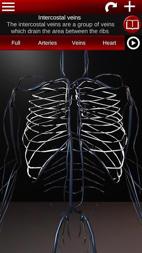 Circulatory System in 3D Anatomy v1.58 screenshots 4