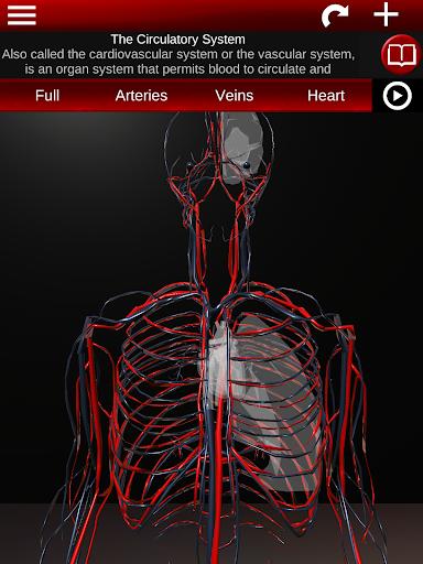 Circulatory System in 3D Anatomy v1.58 screenshots 7