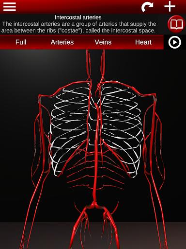 Circulatory System in 3D Anatomy v1.58 screenshots 9