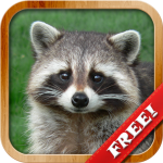 Download Animals for Kids, Planet Earth Animal Sounds 8.3 APK