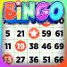 Download Bingo – Offline Free Bingo Games 2.1.1 APK