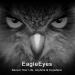 Download EagleEyes(Lite) 1.8.5 APK