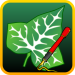 Download Ivy Draw: Vector Drawing 1.35 APK