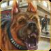 Download US Police Dog Survival : New Games 2021 1.8 APK