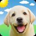 Download Weather Puppy – App & Widget Weather Forecast 5.3.7 APK