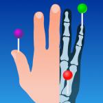 Download e-Anatomy 5.0.3 APK