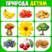 Free Download Фрукты и овощи, ягоды. Учим слова для малышей 4.9 APK