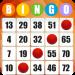 Free Download Absolute Bingo- Free Bingo Games Offline or Online 2.06.002 APK