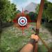 Free Download Archery Big Match 1.3.6 APK