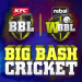 Free Download Big Bash Cricket 2.1 APK