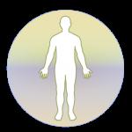 Free Download Homoeopathic Repertorium 3.9.5.9 APK