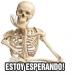 Free Download Memes con Frases Stickers en español para WhatsApp 4.5 APK