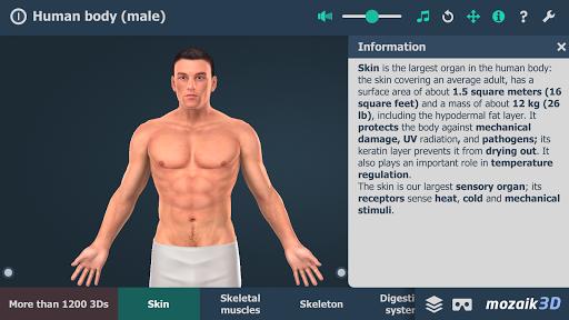 Human body male educational VR 3D v1.24 screenshots 1