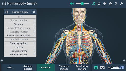Human body male educational VR 3D v1.24 screenshots 4