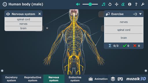 Human body male educational VR 3D v1.24 screenshots 5