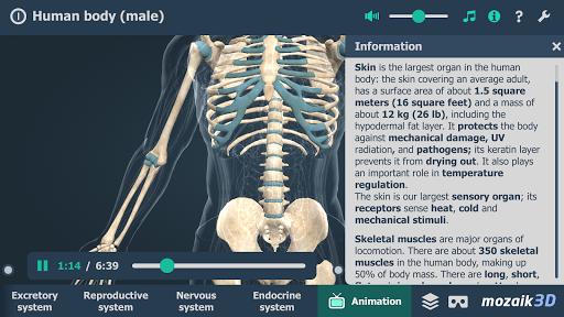 Human body male educational VR 3D v1.24 screenshots 6
