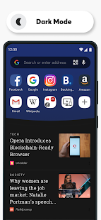 Opera Browser Fast amp Private v64.1.3282.59829 screenshots 5
