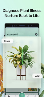 PictureThis Identify Plant Flower Weed and More v3.5 screenshots 4