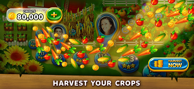 Solitaire Grand Harvest v screenshots 12