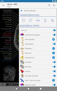 e-Anatomy v5.0.3 screenshots 11