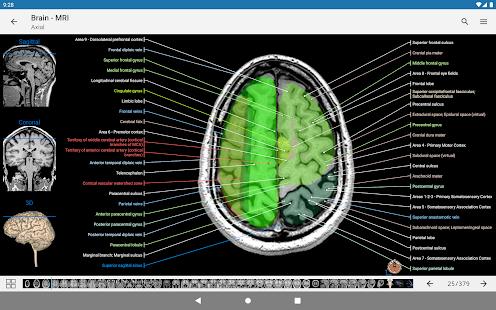 e-Anatomy v5.0.3 screenshots 17