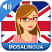 Download Learn English Fast: English Course 10.90 APK