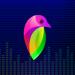 Download Lovi – Beat Slideshow Maker 7.0.9 APK