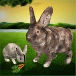Free Download Ultimate Rabbit Simulator 1.12 APK