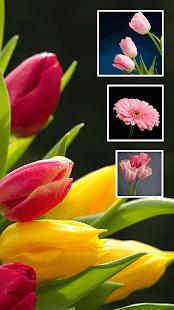 HD Wallpapers v2.3 screenshots 16