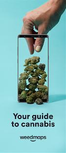 Weedmaps Marijuana Cannabis CBD amp Weed Delivery v008.033.001 screenshots 1