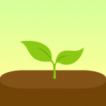 Free Download Forest – Focus Timer for Productivity 4.44.1 APK